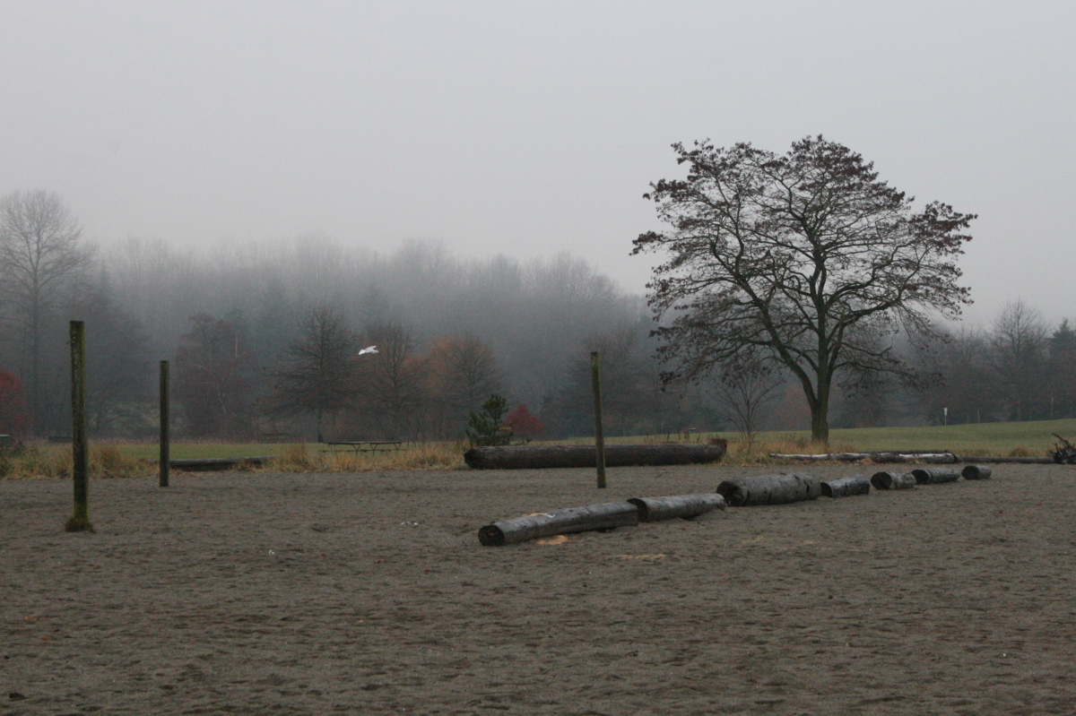 Foggy morning at Jericho Beach