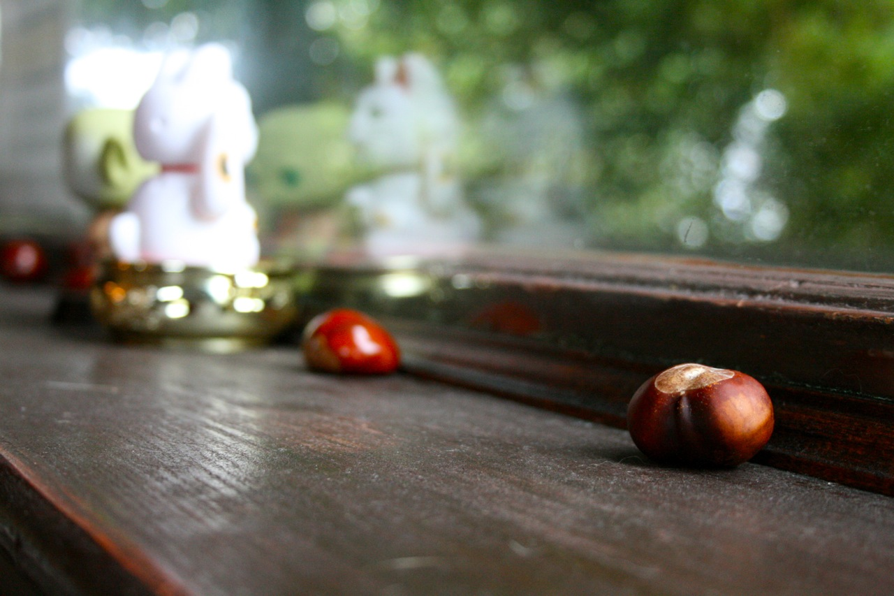 Still life with chestnuts, waving kitty, Yoda bobblehead